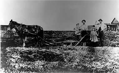James Dole family with horse and plow